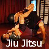 How to Do Jiu Jitsu