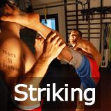 Free Striking Techniques