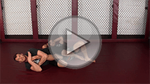 Jiu Jitsu-Kneebar-Guard-Pass copy