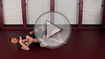 Jiu Jitsu-Kneebar-Guard-Pass copy